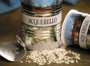 Migliori marche di riso italiano