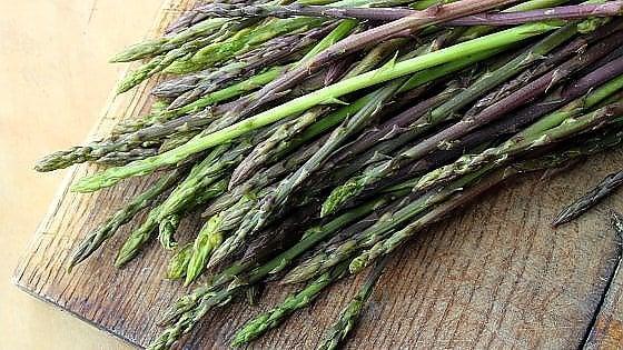 asparagi selvatici pugliesi